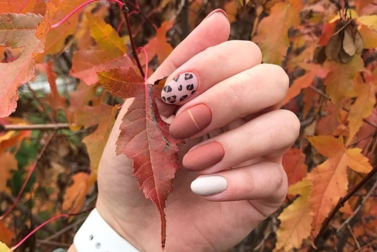 Autumn manicure 2021: fashion trends and beautiful ideas (50 photos)